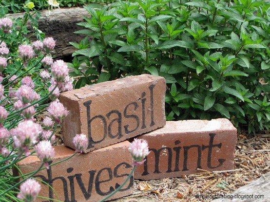 דרך מקסימה ומקורית לסימון ערוגות תבלינים בגינה.